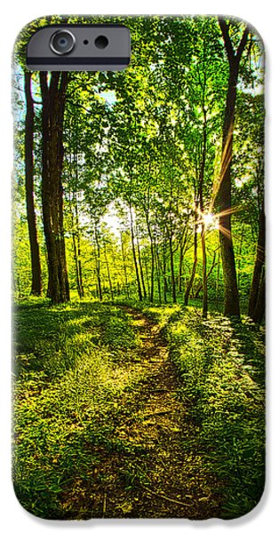Solitary Journey IPhone Case by Phil Koch