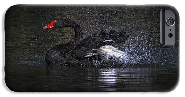 Splish Splash IPhone Case by Joachim G Pinkawa