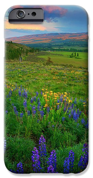 Spring Storm Passing IPhone Case by Mike  Dawson