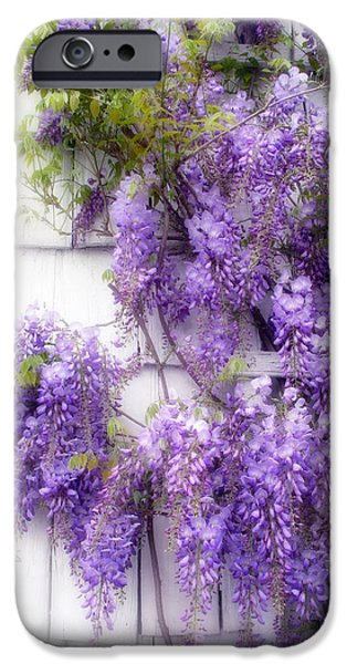 Spring Wisteria IPhone Case by Jessica Jenney