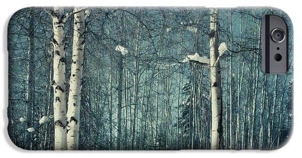Still Winter IPhone Case by Priska Wettstein