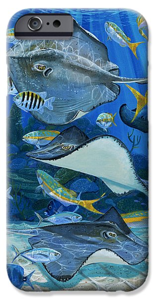 Stingray City Re0011 IPhone Case by Carey Chen