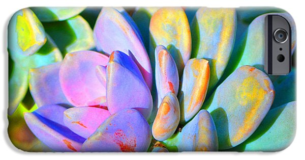 Succulent Color - Botanical Art By Sharon Cummings IPhone Case by Sharon Cummings