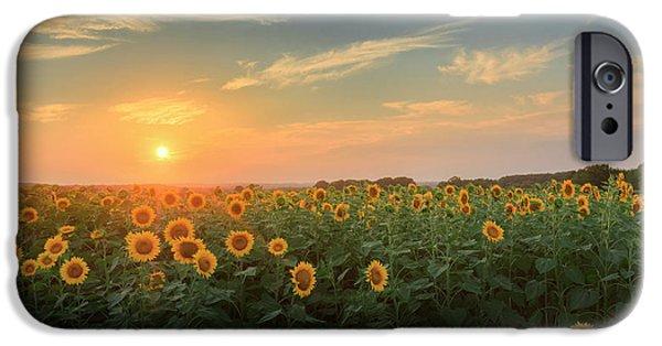 Sunflower Sundown IPhone Case by Bill Wakeley