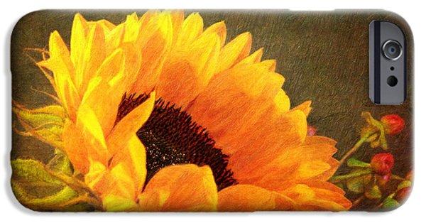 Sunflower - You Are My Sunshine IPhone Case by Lianne Schneider