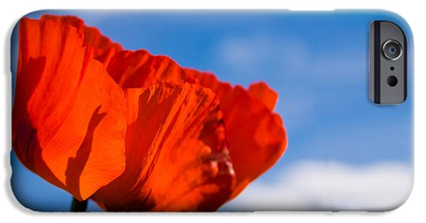 Sunlit Poppy IPhone Case by Adam Romanowicz