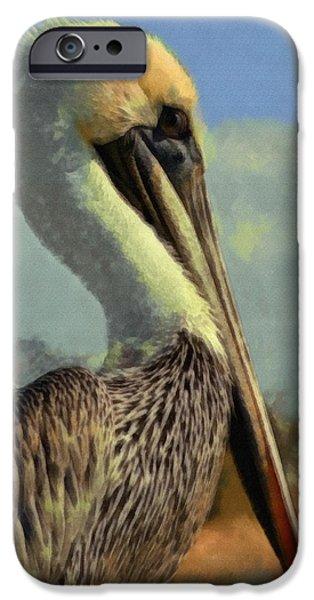 Sunrise Pelican IPhone 6s Case by Ernie Echols