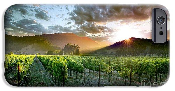 Wine Country IPhone 6s Case by Jon Neidert