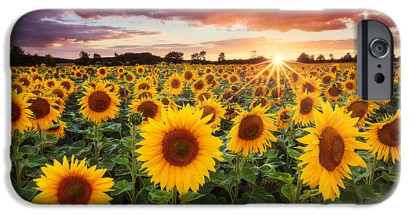 Sunshine IPhone Case by Michael Breitung