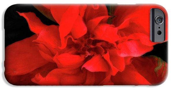 Sweetheart IPhone Case by Molly McPherson