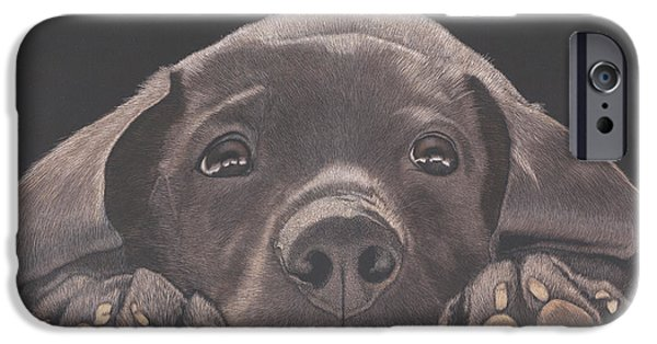 Take Me Home - Chocolate Lab Puppy IPhone Case by Joelle
