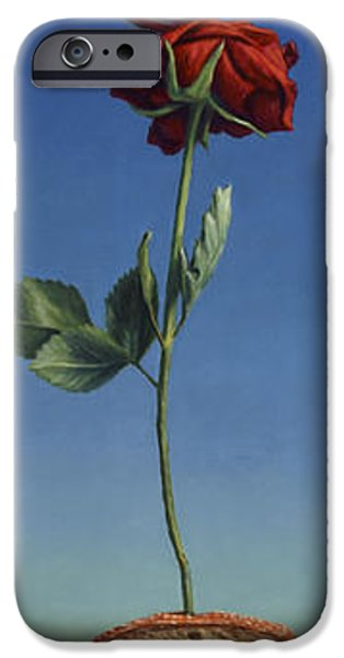 Tenuous Still-life 1 IPhone Case by James W Johnson