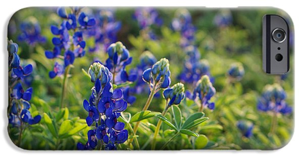 Texas Bluebonnets In Early Sun IPhone Case by Lisa  Spencer