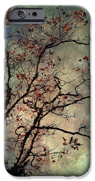 Textured Oak Tree Art IPhone Case by Christina Rollo