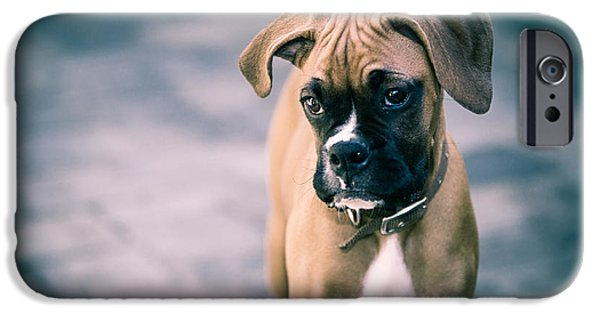 The Boxer IPhone Case by Karen Zucal Varnas
