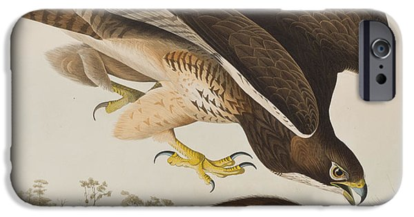 The Common Buzzard IPhone 6s Case by John James Audubon