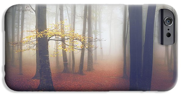 The Light-tree II IPhone Case by Toma Bonciu