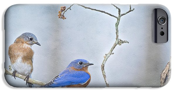 The Presence Of Bluebirds IPhone 6s Case by Bonnie Barry