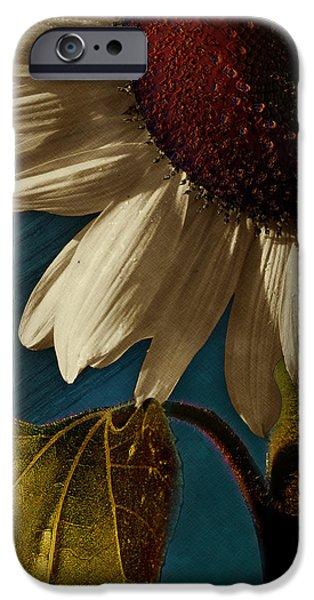 Sunflower IPhone Case by Bernie  Lee