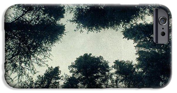 Tree Tops IPhone Case by Brett Pfister