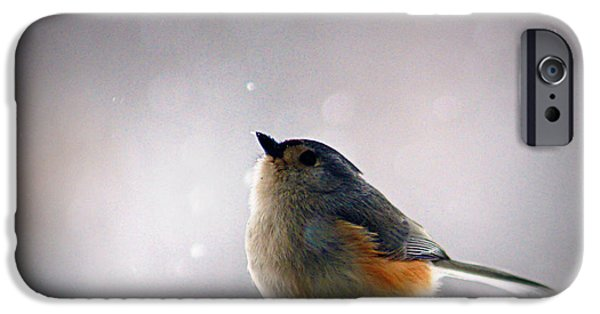 Tufted Titmouse IPhone 6s Case by Cricket Hackmann
