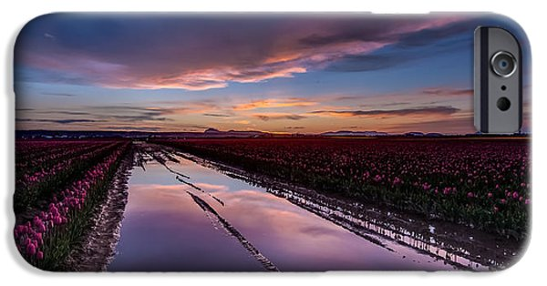 Tulips And Purple Skies IPhone Case by Mike Reid