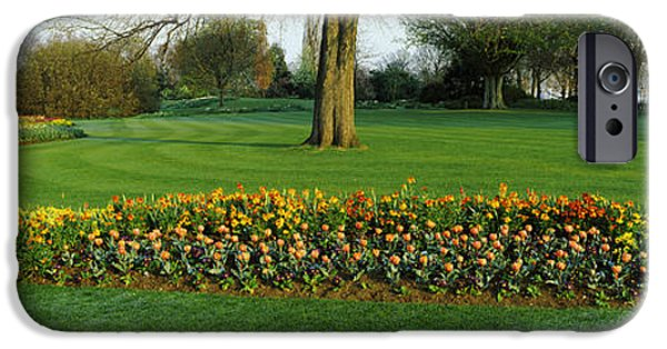 Tulips In Hyde Park, City IPhone 6s Case by Panoramic Images