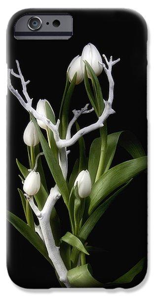 Tulips In Tree Branch Still Life IPhone Case by Tom Mc Nemar