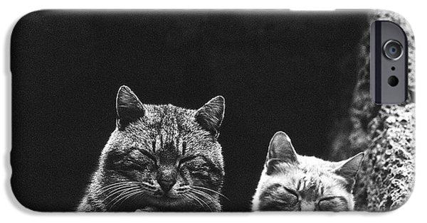 Twins IPhone Case by Heiko Koehrer-Wagner