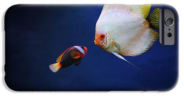 Underwater Love  IPhone Case by Heike Hultsch