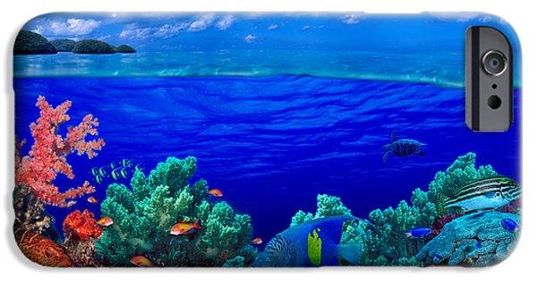 Underwater View Of Yellowbar Angelfish IPhone Case by Panoramic Images