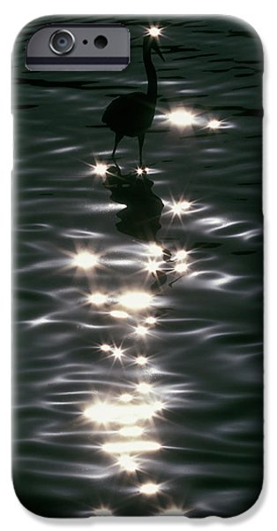 Usa, Florida, Placido IPhone Case by Jaynes Gallery