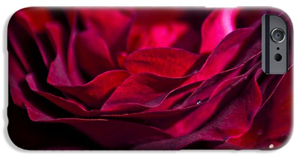 Velvet Red Rose IPhone Case by Jan Bickerton