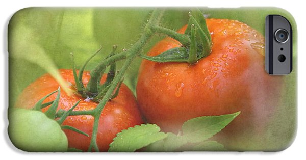 Vine Ripened Tomatoes IPhone 6s Case by Angie Vogel