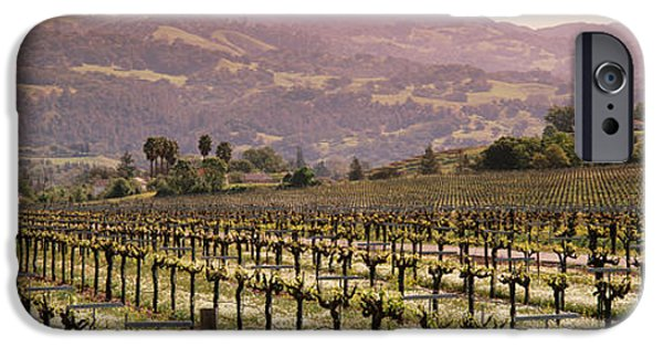 Vineyard On A Landscape, Asti IPhone Case by Panoramic Images