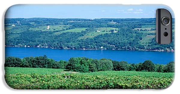 Vineyard With A Lake In The Background IPhone Case by Panoramic Images