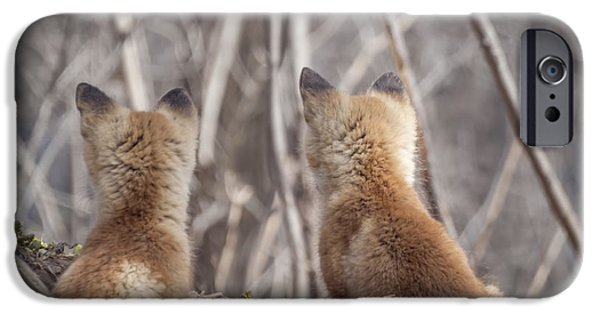 Waiting For Mom 2011 IPhone Case by Thomas Young