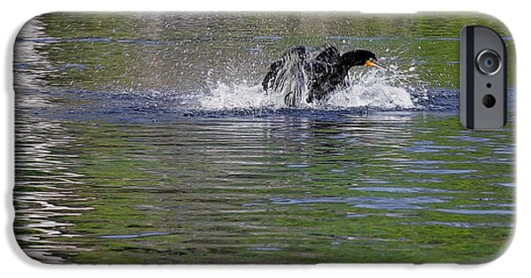 Walk On Water - The Anhinga IPhone Case by Christine Till