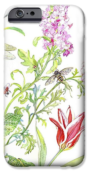 Wasp And Ranucula IPhone Case by Kimberly McSparran