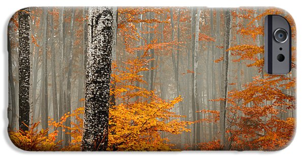 Welcome To Orange Forest IPhone 6s Case by Evgeni Dinev
