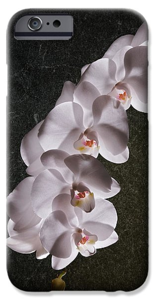 White Orchid Still Life IPhone Case by Tom Mc Nemar
