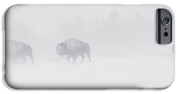 Whiteout IPhone 6s Case by Sandy Sisti