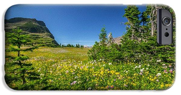 Wild Flowers Glacier National Paintedpark   IPhone Case by Rich Franco
