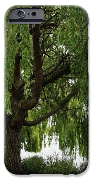 Willow IPhone Case by Mark Rogan