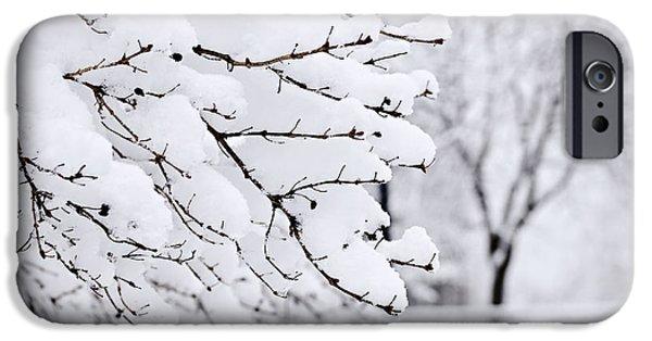 Winter Park Under Heavy Snow IPhone Case by Elena Elisseeva