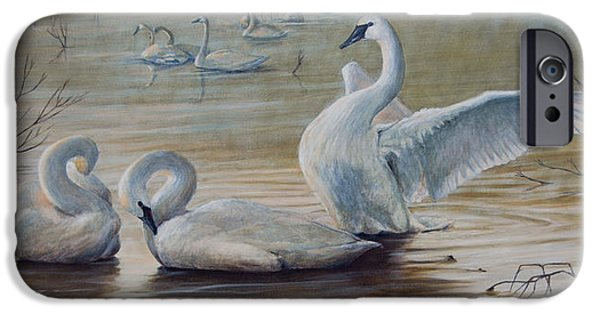 Wintering Trumpeters IPhone 6s Case by Rob Dreyer AFC