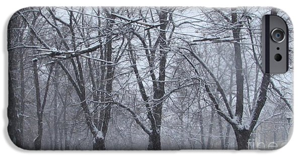Wintry IPhone 6s Case by Anna Yurasovsky