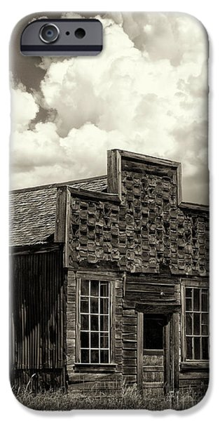 Withstanding The Years IPhone Case by Sandra Bronstein