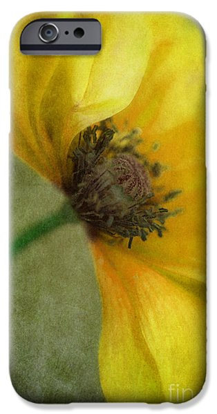 Yellow Poppy IPhone Case by Priska Wettstein