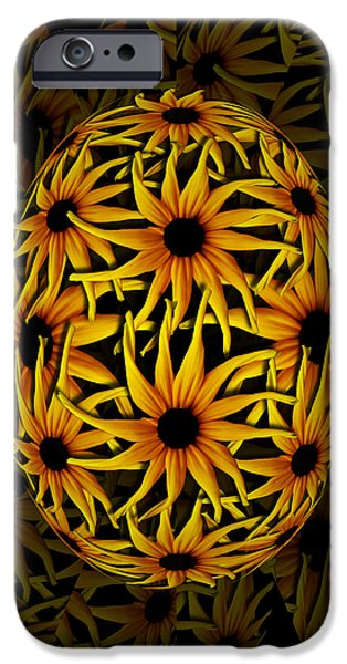 Yellow Sunflower Seed IPhone Case by Barbara St Jean
